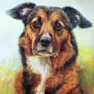 Julie Brenan Canine Artist
